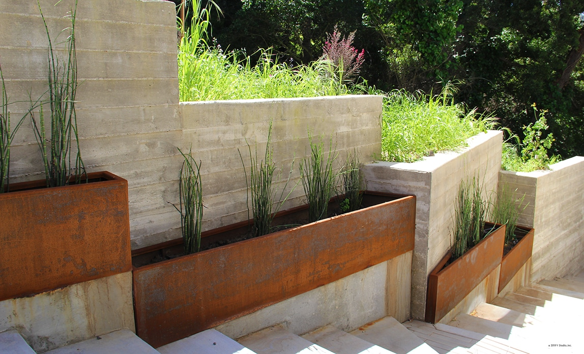 slightly rusted angular corten steel planters with horsetail plants inside